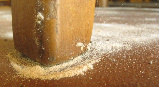 Eliminar carcoma por congelaci n elimina carcoma - Como eliminar la polilla de la madera ...